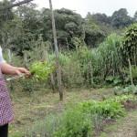 Las mujeres de Amagro se integraron desde el inicio en todas las actividades de Mejoramiento de Vida.
