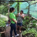 Avances Plan individual por la señora Elsa Garita Montero